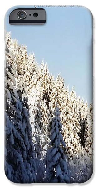 Winter Wonderland Austria Europe iPhone Case by Sabine Jacobs