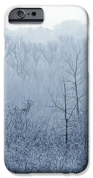 Winter Wonderland iPhone Case by Scott Norris