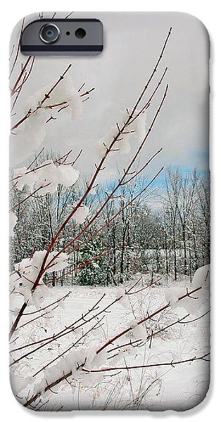 New England Snow Scene iPhone Cases - Winter Woods iPhone Case by Joann Vitali
