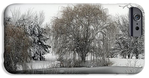 Willow Lake iPhone Cases - Winters Pond iPhone Case by Elizabeth Winter