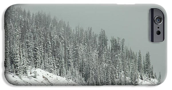 Arapaho iPhone Cases - Winters Veil iPhone Case by Dana DiPasquale