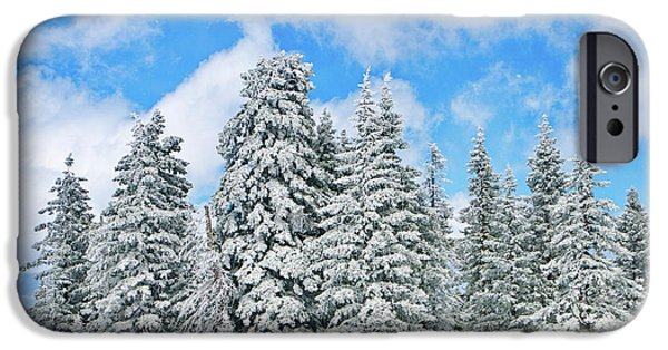 Snow iPhone Cases - Winterscape iPhone Case by Jeff Kolker