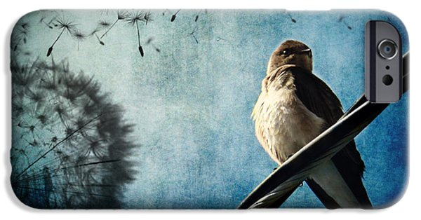 Swallows iPhone Cases - Wishing Swallow iPhone Case by Nancy  Coelho