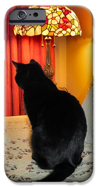 Witch Halloween Cat Wicca Photographs iPhone Cases - Witches Cat iPhone Case by Michelle Milano