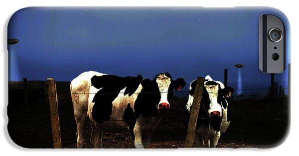Cow Humorous iPhone Cases - Witness . The Arrival . with text iPhone Case by Wingsdomain Art and Photography