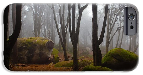 Forest iPhone Cases - Wonderland iPhone Case by Jorge Maia