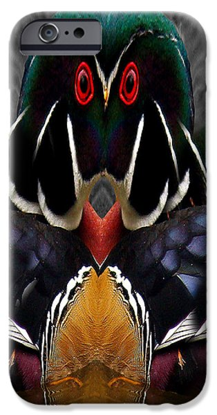 Wood Owl iPhone Case by Jean Noren