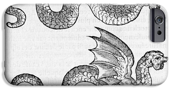 Serpent iPhone Cases - Woodcut Of Two Dragons iPhone Case by Middle Temple Library