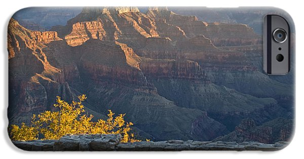 Grand Canyon Drawings iPhone Cases - Wooden Bench at Canyon iPhone Case by Kate Sumners