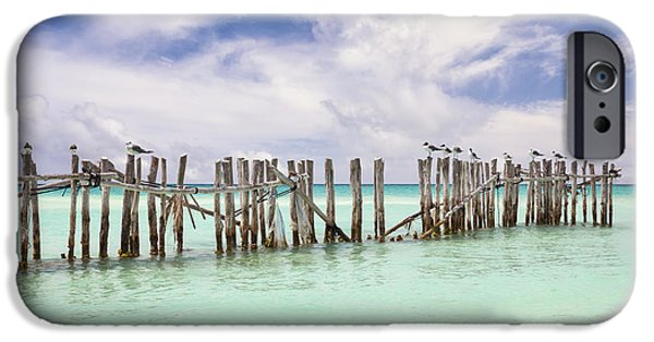 Man Made Space iPhone Cases - Wooden Fence Extending Into Ocean iPhone Case by Bryan Mullennix