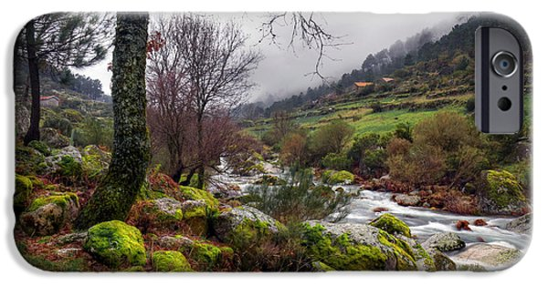 Autumn Scenes Photographs iPhone Cases - Woods Landscape iPhone Case by Carlos Caetano