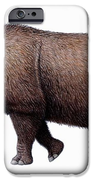Woolly Rhinoceros, Artwork iPhone Case by Mauricio Anton