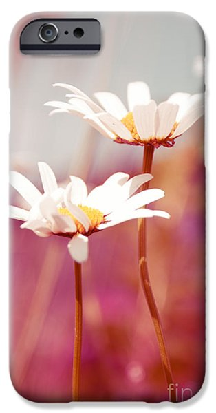 Xposed - s03 iPhone Case by Variance Collections