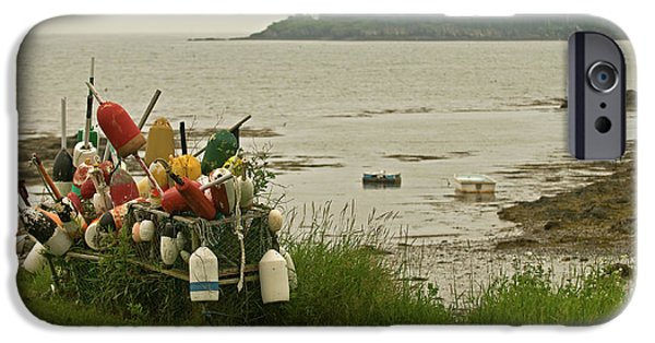 Mid-coast Maine iPhone Cases - Yard Art iPhone Case by Paul Mangold