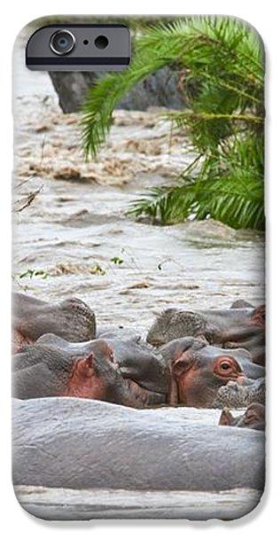 Yawning Hippo Hippopotamus Amphibius iPhone Case by Carson Ganci