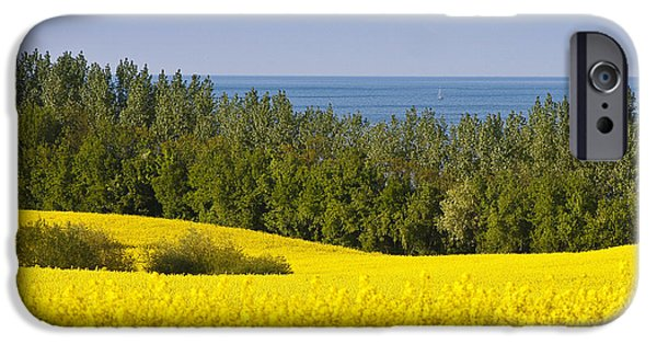 Canola Field iPhone Cases - Yellow Blue Green iPhone Case by Andy Bitterer