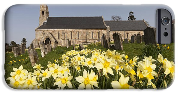 Headstones iPhone Cases - Yellow Daffodils In A Cemetery Beside A iPhone Case by John Short