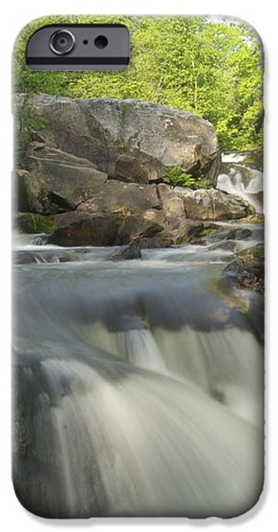 Yellow Dog Falls 3 iPhone Case by Michael Peychich