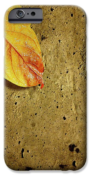 Yellow Fall Leafs iPhone Case by Carlos Caetano