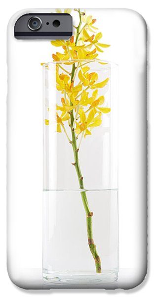 Reflex iPhone Cases - Yellow Orchid In Vase iPhone Case by Atiketta Sangasaeng