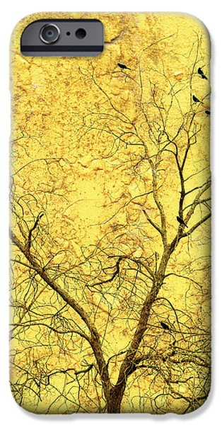 Yellow Wall iPhone Case by Skip Nall