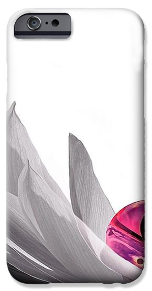 Yin Yang iPhone Case by Photodream Art