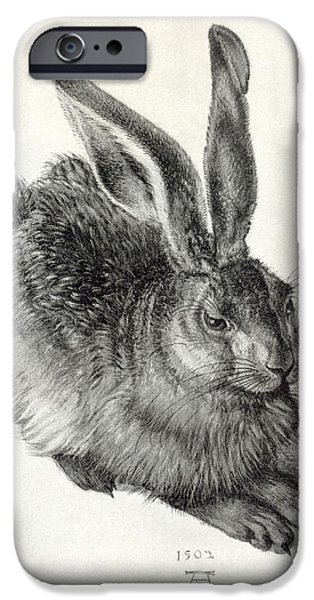 Young Hare, By Durer iPhone Case by Sheila Terry