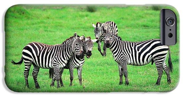 Savannah iPhone Cases - Zebras iPhone Case by Sebastian Musial