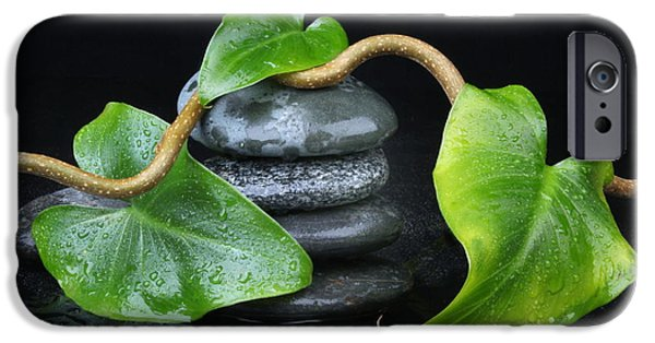 Sheets Photographs iPhone Cases - Zen... iPhone Case by Manfred Lutzius