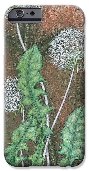 Flora Drawings iPhone Cases -  Dandelion iPhone Case by Sandra Moore