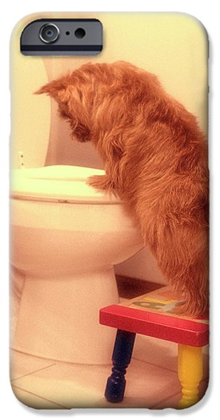 Terrier Digital iPhone Cases -  Doggy Potty Training Time  iPhone Case by Susan Stone