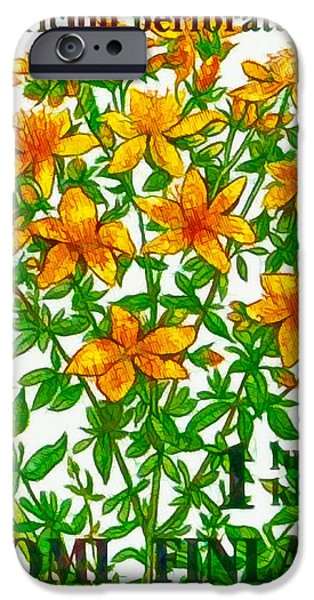 Sheets iPhone Cases -  Hypericum perforatum iPhone Case by Lanjee Chee