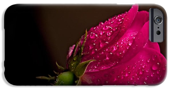 Pastel iPhone Cases -  Incandescent iPhone Case by F Leblanc