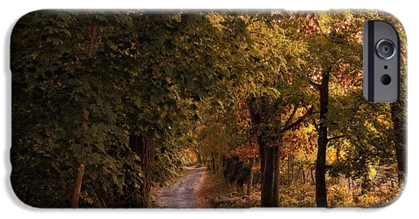Autumn Road iPhone Cases -  Rural Road  iPhone Case by Jessica Jenney