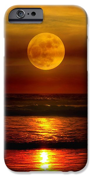 Rust iPhone Cases - 0358 iPhone Case by Mikes Nature
