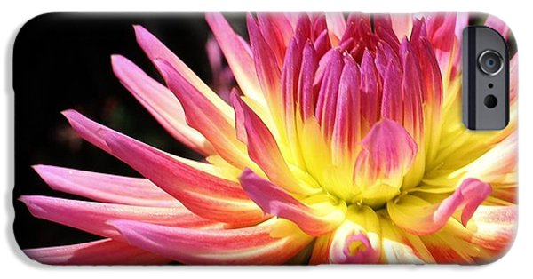 Chicago iPhone Cases - A Burst of Color iPhone Case by Bruce Bley