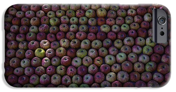 Farm Stand iPhone Cases - Apple Harvest iPhone Case by Garry Gay
