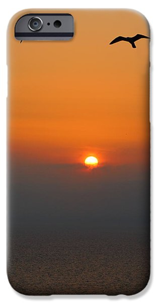 United iPhone Cases - At Sunset iPhone Case by Rumyana Whitcher