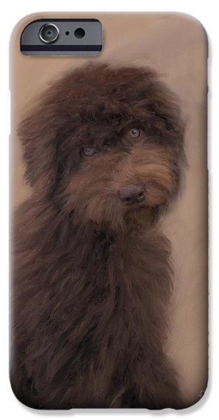 Dogs iPhone Cases - Australian Labradoodle  iPhone Case by Susan  Lipschutz