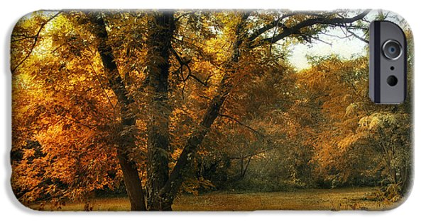 Meadow Digital iPhone Cases - Autumn Arises iPhone Case by Jessica Jenney