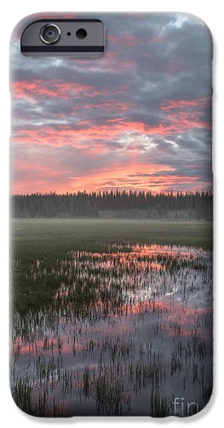 United States iPhone Cases - Awakening iPhone Case by Sandra Bronstein