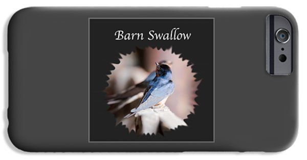 Barn Swallow iPhone Cases - Barn Swallow iPhone Case by Jan M Holden