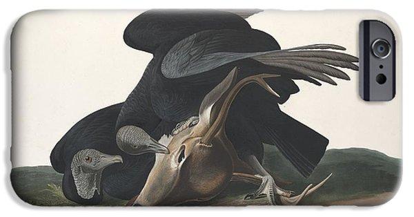 Vulture iPhone Cases - Black Vulture iPhone Case by John James Audubon