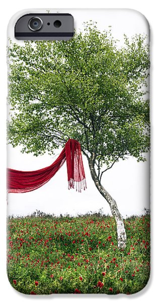 Meadow Photographs iPhone Cases - Blowing In The Wind iPhone Case by Joana Kruse