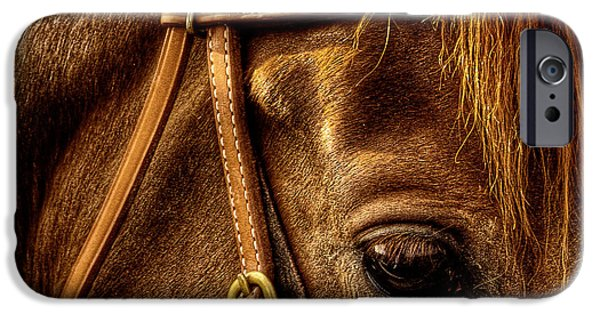 David Patterson iPhone Cases - Bridled iPhone Case by David Patterson