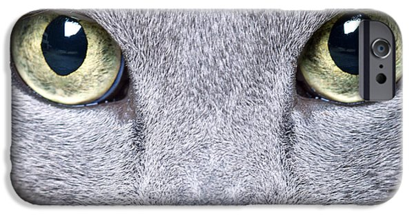 Gray Hair iPhone Cases - Cat Eyes iPhone Case by Nailia Schwarz