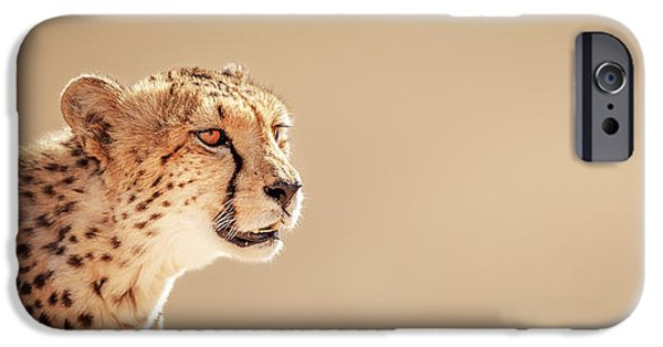 One iPhone Cases - Cheetah portrait iPhone Case by Johan Swanepoel