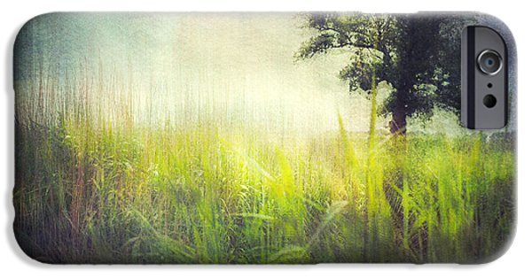 Nature Abstract iPhone Cases - Connies Backyard iPhone Case by Violet Gray