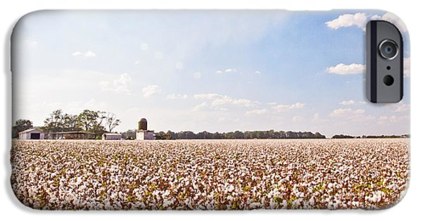 Arkansas iPhone Cases - Cotton Field iPhone Case by Scott Pellegrin