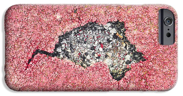 Torn iPhone Cases - Damaged surface iPhone Case by Tom Gowanlock